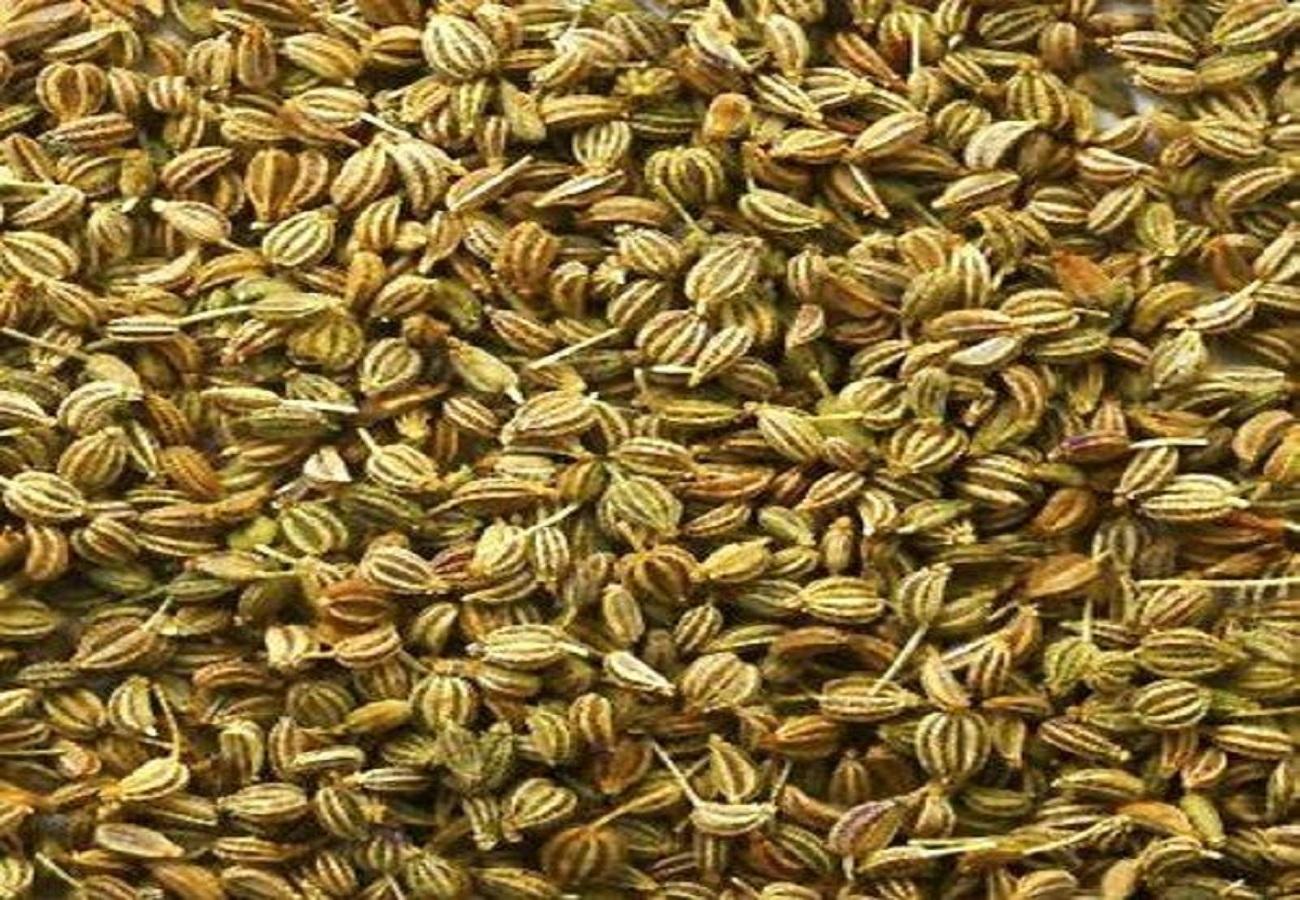 Ajwain / Owa / Carom Seeds
